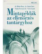Mintapéldák az ellenőrzés tantárgyhoz - Birher Ilona Dr., Sztanó Imre Dr., Vladár Ferencné, Vörös László