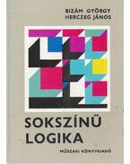 Sokszínű logika - Bizám György, Herczeg János
