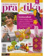 Praktika 2013/4. április - Boda Ildikó (főszerk.)