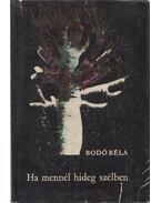 Ha mennél hideg szélben - Bodó Béla