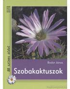 Szobakaktuszok - Bodor János