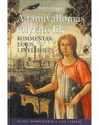 A tanúvallomás folytatódik - kommentár János leveleihez - Bolyki János