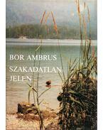 Szakadatlan jelen - Bor Ambrus