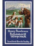 Behavazott lábnyomok - Bordeaux, Henry