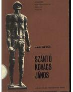 Szántó Kovács János - Nagy Dezső