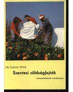 Szentesi zöldségfajták nemesítésének eredményei - Dr. Szalva Péter