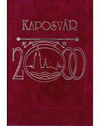 Kaposvár 2000-ben - Bősze Sándor, Dávid János, Récsei Balázs, Varga Éva
