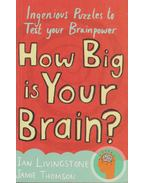 How Big is Your Brain? - Livingstone, Ian, Thomson, Jamie