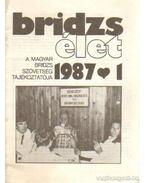 Bridzs élet 1987-1