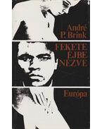 Fekete éjbe nézve - Brink, André P.