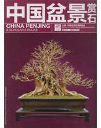 China Penjing & Scholar's Rocks - 中国盆景赏石 - Chinese Penjing Artists Association