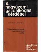 Vállalatfejlesztési tervek lineáris dinamikus modellje - Csáki Csaba, Varga Gyula