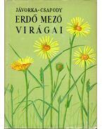Erdő mező virágai - Csapody Vera, Jávorka Sándor