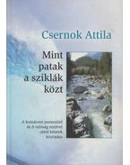 Mint a patak a sziklák közt (dedikált) - Csernok Attila
