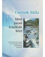Mint patak a sziklák közt - Csernok Attila