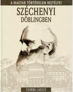 Széchenyi Döblingben - Csorba László