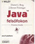 Java felsőfokon - Daniel J. Berg, J. Steven Fritzinger