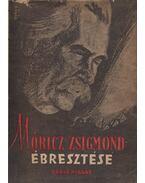 Móricz Zsigmond ébresztése - Darvas József