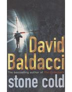 Stone Cold - David BALDACCI