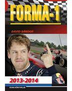 Forma-1 sztorik 2013-2014 - Dávid Sándor
