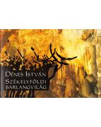 Székelyföldi barlangvilág (dedikált) - Dénes István