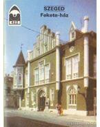 Szeged - Fekete-ház - Dercsényi Balázs