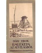 Emlékeim az alvilágból - Déry Tibor