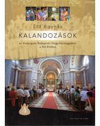 Élő Egyház - Kalandozások az Esztergom-Budapesti Egyházmegyében a Hit Évében - Domokos György