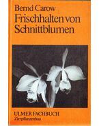 Frischhalten von Schnittblumen - Dr. Bernd Carow