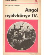 Angol nyelvkönyv IV. - Dr. Budai László