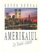 Kevés szóval amerikaiul - Dr. Budai László