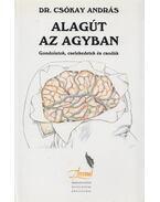 Alagút az agyban - Dr. Csókay András
