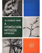 A gyümölcsfák metszése képekben - Dr. Jeszenszky Árpád