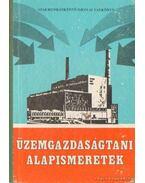 Üzemgazdasági alapismeretek - Dr. Surányi Kálmán