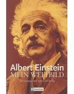 Mein Weltbild - Einstein, Albert, Seelig, Carl