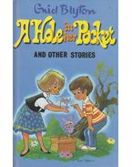 A Hole in the Pocket - Enid Blyton