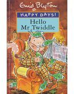 Hello Mr Twiddle! - Enid Blyton