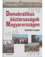 Demokratikus köztársaságok Magyarországon - Erényi Tibor, Kende János, Ripp Zoltán, Feitl István