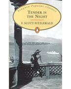 Tender is the Night - F. Scott Fitzgerald