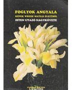 Foglyok angyala / Isten utazó nagykövete - Farkas Zoltán, Latimer, R. S.