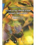 Itt van az ősz, elmúlt a nyár, kelepel a gólyamadár - Ferencz Éva, Lukács Józsefné