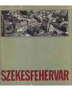 Székesfehérvár - Fitz Jenő, Papp Imre, Császár László