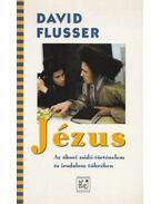 Jézus - Flusser, David
