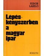 Lépéskényszerben a magyar ipar - Fodor László