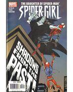 Spider-Girl No. 96 - Frenz, Ron, Defalco, Tom