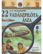 A II. Világháború 22 vadászpilóta-ásza - Géczi Zoltán