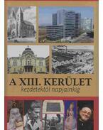 A XIII. kerület - Gellért Lajos, Juhász Katalin, Pappné Vőneki Erzsébet