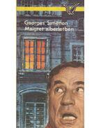 Maigret albérletben - Georges Simenon