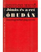 Jónás és a cet Óbudán - Gondos Ernő