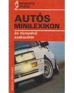 Autós minilexikon és tíznyelvű szakszótár - Hack Emil